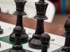 20131221_scacchi_028
