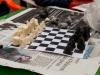 20131221_scacchi_051
