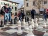 20131221_scacchi_059